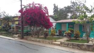 Maison verte 2