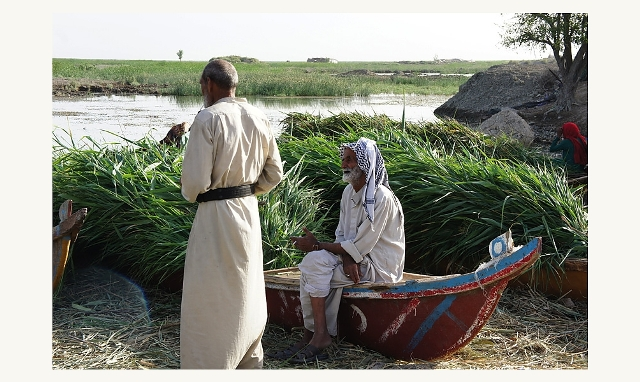 sarah_hassan_la vie des marais Sud Irak