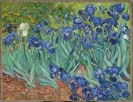 Vincent Van Gogh Iris Wikipedia